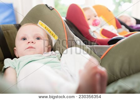 New-born babies in toddler group lying in the baby shells