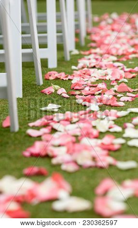 Pink rose petal runner for outdoor wedding.
