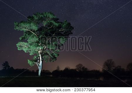 Night Landscape Of Tree And Starry Sky. Starry Night Over Large Tree On Shore Of River.