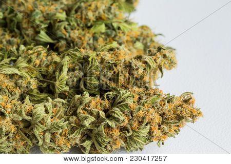 Close Up Of Dried Cannabis Medical Marijuana Flowers
