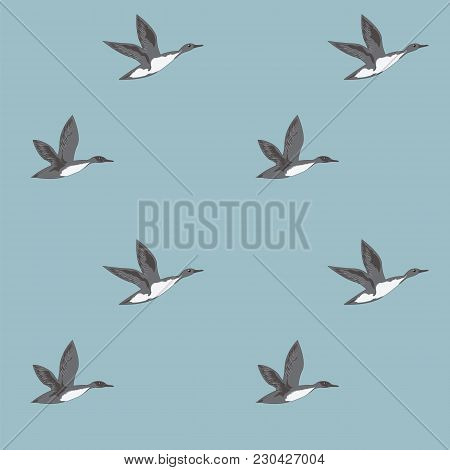 Pattern Flying Wild Gray Ducks On A Light Blue Background Art Abstract Creative Modern Vector Illust