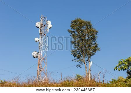 Cellular Tower And Tree Against The Blue Sky.