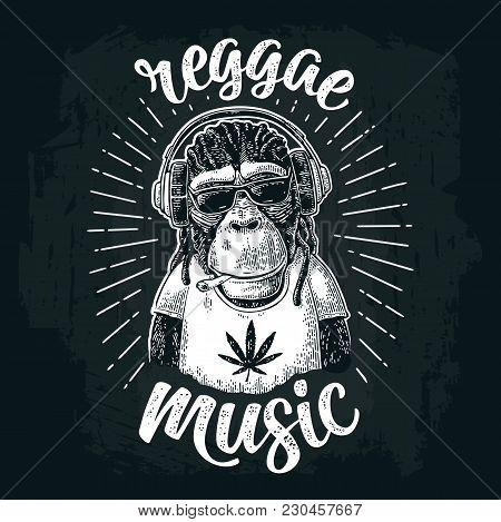 Monkey Hipster With Dreadlocks In Headphones, Sunglasses And T-shirt With Marijuana Leaf. Reggae Mus