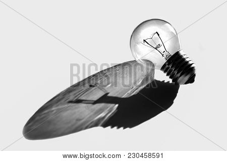 Light Bulb With Reflection, Black And White Photo