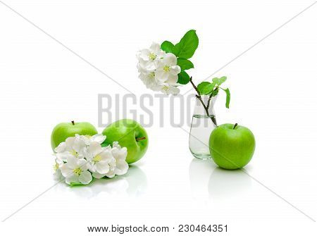Ripe Green Apple And Blossoming Branch Of Apple On A White Background. Horizontal Photo.