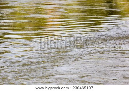 Expanse Of Water In Nature . In The Park In Nature