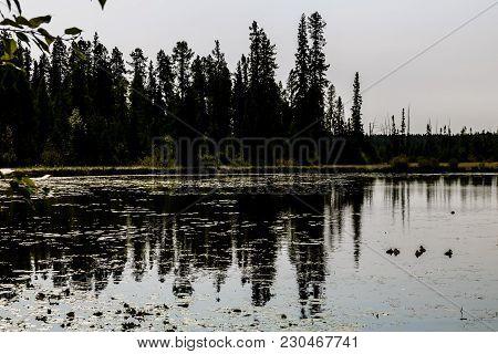 Twin Lake, Crimson Lake Provincial Park, Alberta, Canada