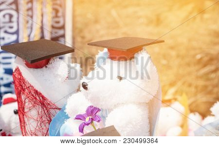 Concept Of International Graduate Study, Graduation Black Cap On Teddy Bear Wearing Back Hat At Outd