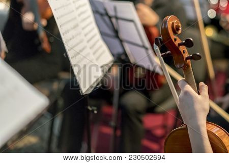 Hand On The Strings Of A Violin. Symphony Orchestra In Indoor. Selected Focus.