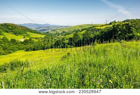 Lovely Mountainous Countryside In Summertime. Grassy Hillside Near The Forest. Mountain Ridge With H