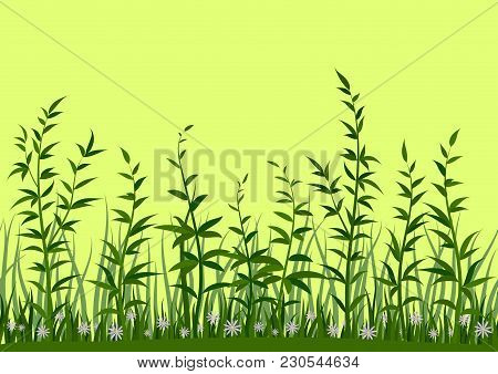 Seamless Horizontal Background, Nature, Landscape With Fresh Green Grass, Leaves And Lilac Flowers O