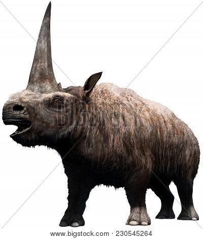 Elasmotherium From The Pleistocene Era 3d Illustration