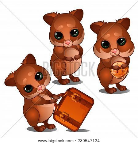 Little Hamsters Isolated On White Background. Vector Cartoon Close-up Illustration.