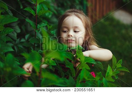 Little Girl Studying Nature. Joyful Child In A Good Mood. Education Of Interest Life In Children.