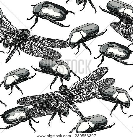 Seamless Monochrome Pattern With Scarab Beetle And Dragonfly On White Background. Vector Illustratio