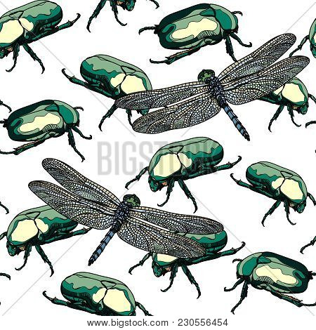 Seamless Pattern With Scarab Beetle And Dragonfly On White Background. Vector Illustration.