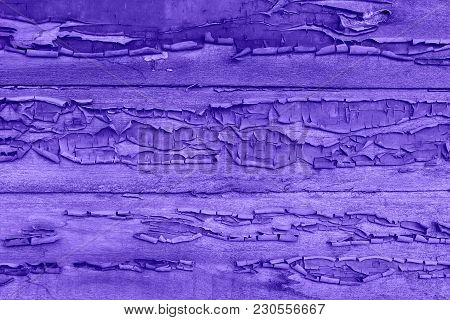 Texture Of A Wooden Painted Fence, Ultraviolet Panton