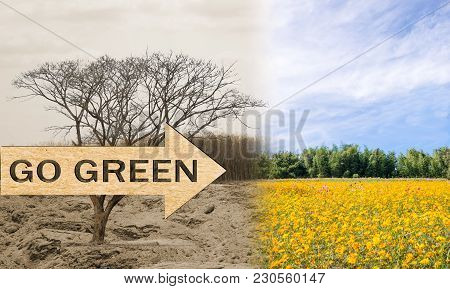 Ecology Concept Go Green Change Tree Forest Drought And Forest Refreshing