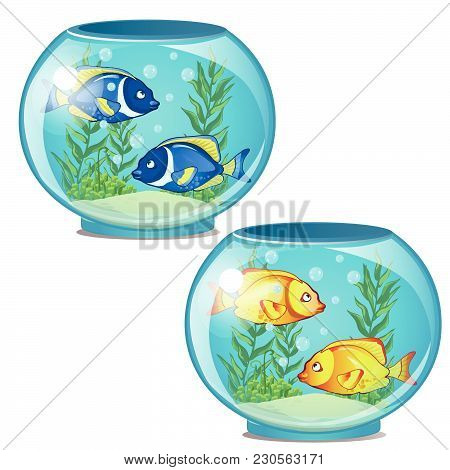 Set Of Two Round Fish Tanks. Vector Illustration.