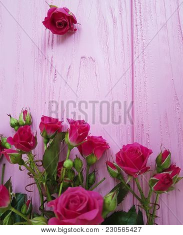 roses on a pink wooden background softness, soft, vibrant, natural