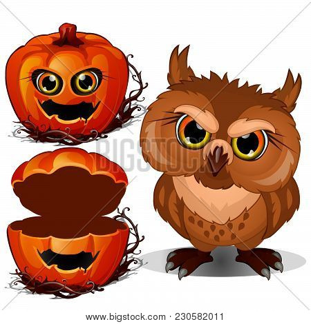 Sullen Owl And A Casket Of Pumpkin Head. Sketch For Greeting Cards, Posters Or Party Invitations Hal