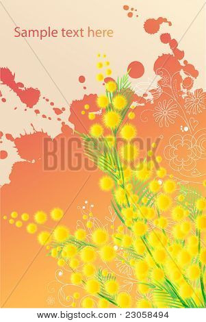 Beautiful colorful  grunge background with spring blossoming branch of mimosa poster