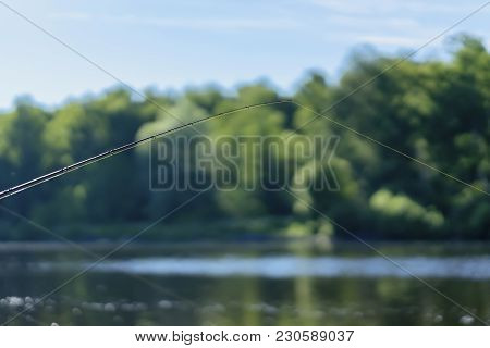 Summer Landscape With Fishing Line On The Background Of Lake, Opposite Shore, Morning. Copy Space