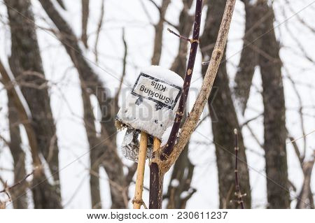 A Pack Of Cigarettes In A Dry Winter Forest Demonstrates The Pollution Of Nature, And The Inscriptio