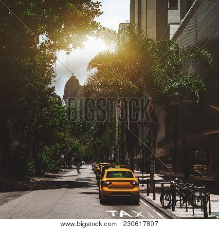 Row Of Yellow Vacant Taxi Cars On Street Of Rio De Janeiro In Brazil With Bicycles And Palms In The