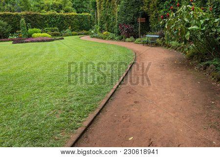 Garden at Terra Nostra park, Sao Miguel Iskand, Azores