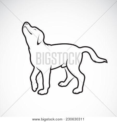 Vector Of A Dog Labrador On White Background. Pet. Animals. Easy Editable Layered Vector Illustratio