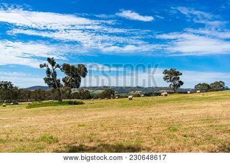 Vast Countryside Landscape With Straw Bales. Nature Background