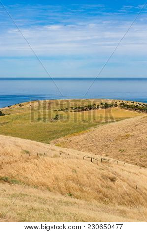 Spectacular Landscape With Rolling Hillscovered With Dry Yellow Grass And Blue Sea On Clear Day. Aus