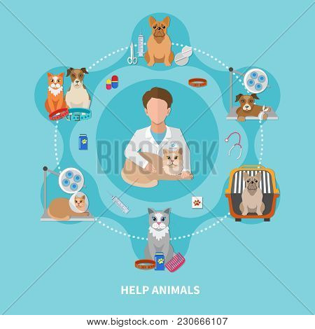 Help Animals Veterinary Care Treatments Medication Flat Circle Composition Poster With Pet Doctor In