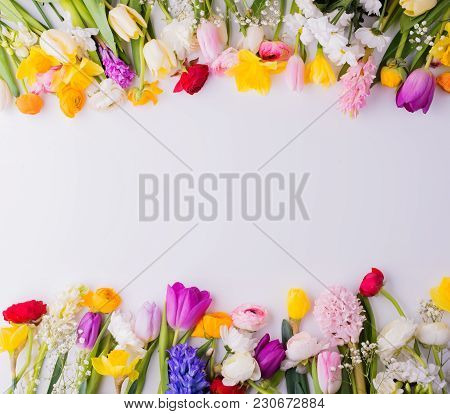 Colorful Flowers On A White Background. Studio Shot. Copy Space. Easter And Spring Flat Lay.