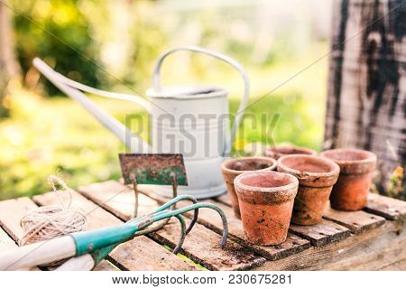 Close Up Of Garden Tools In The Garden. Hoe, Cultivator, Watering Can And Flower Pots On The Wooden