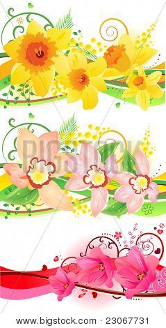 Three beautiful floral elements with daffodils, tulips, and orchids. Raster version. Vector version is in my gallery