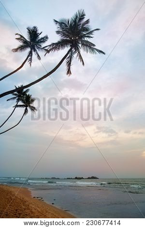 Pink Dawn On The Indian Ocean Coast