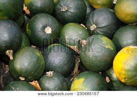 Thanksgiving - Pumpkins On A Market - Many Different Pumpkins On A Local Farmer Market Like Butternu