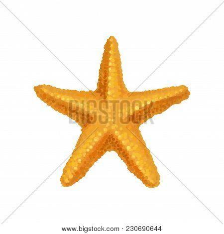 Icon Of Bright Orange Ocean Starfish. Sea Animal. Aquatic And Marine Element. Colorful Decorative Ob