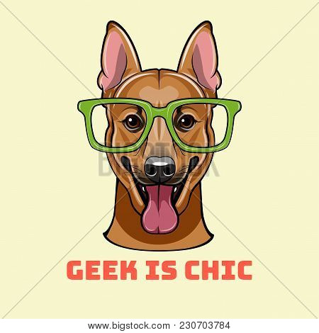 Shepherd Dog In Smart Glasses. German Shepherd Geek Portrait. Vector Illustration. Geek Is Chic Lett