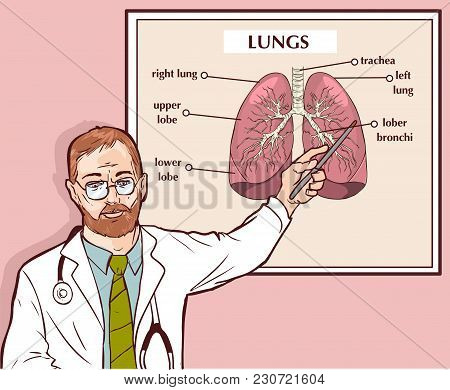Vector Illustration Of A Doctor Explaining The Lungs