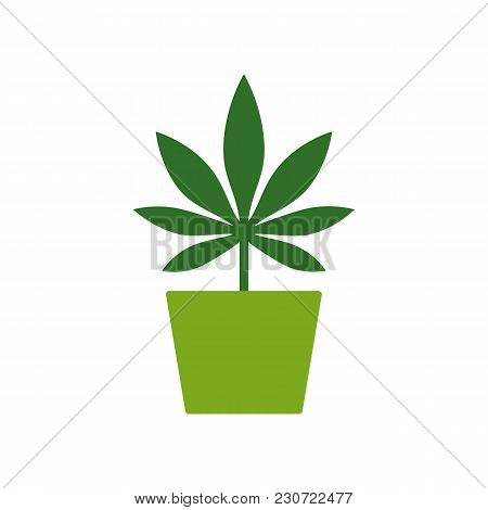 Marijuana Or Cannabis Plant In A Flower Pot. Cultivation Of Cannabis. Marijuana Leaf Icon Logo Templ