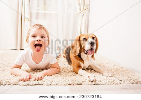 The Dog And The Boy Are Having  Fun At Home