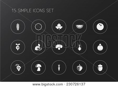 Set Of 15 Editable Kitchenware Icons. Includes Symbols Such As Acorn, Pomegranate, Lemon And More. C