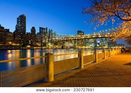 The Shore Of Roosevelt Island And Queensboro Bridge, Manhattan, New York City, Usa
