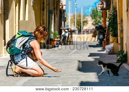 Young Woman Feeds A Homeless Cat On The Street