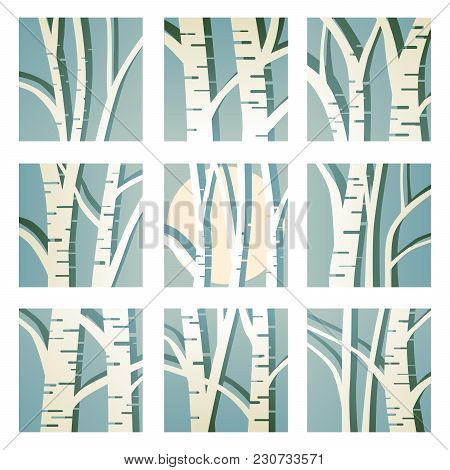 Set Of Square Icons With Abstract Birch Trees And Its Shadow.
