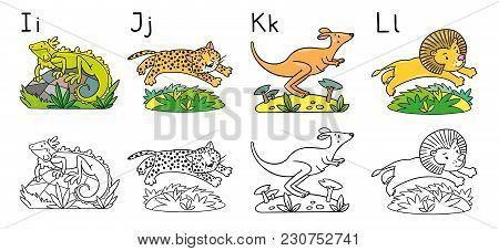 Coloring Book Or Coloring Picture Of Funny Iguana, Jaguar, Kangaroo And Lion. Animals Zoo Alphabet O