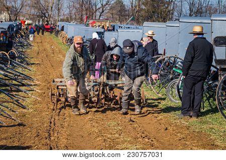 Pulling Plow In Muddy Field